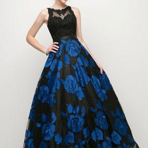 A-Line Sleeveless Evening Long Dress